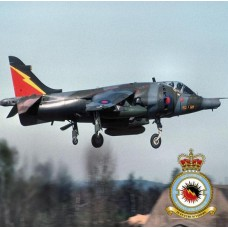 4 SQUADRON HARRIER  COASTER
