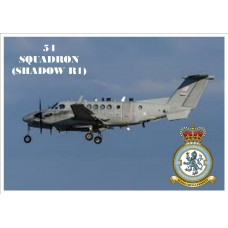 54 SQUADRON (SHADOW) KEYRING/FRIDGE MAGNET/BOTTLE OPENER