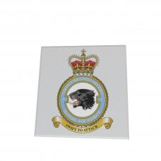 RAF No1 GROUP COASTER