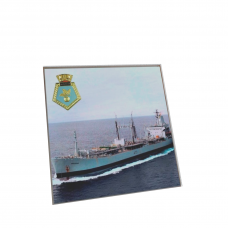 RFA APPLELEAF COASTER