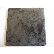 TERRIER SQUARE NATURAL SLATE COASTER FOR ANY OCCASION